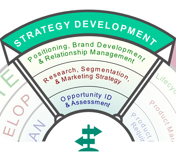 Strategy Development Services: Opportunity assessment, research, positioning and brand development