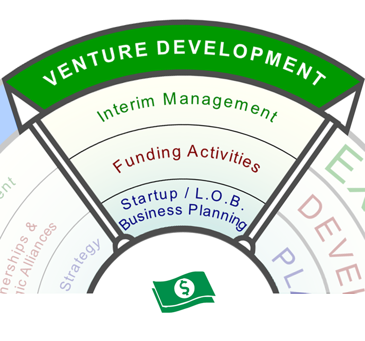 Venture Development Services: Business model development, planning, fundraising and interim management